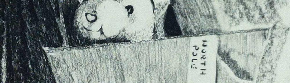 Bear in a box illustration